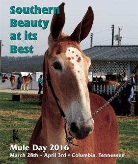 2016 Mule Day Program